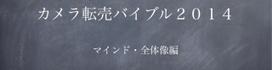 カメラ転売バイブル2014・マインド・全体像編.PNG